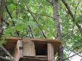 Oravatkin saivat majan